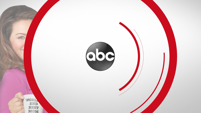 NCS_ABC-Network-Branding_0015