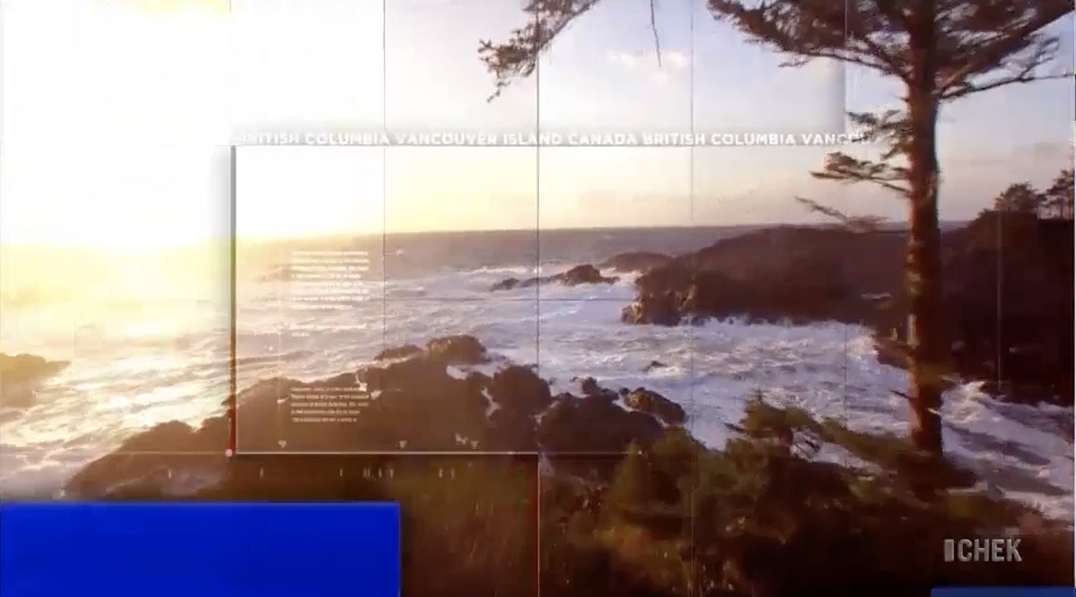 NCS_CHEK-News_Graphics_0004