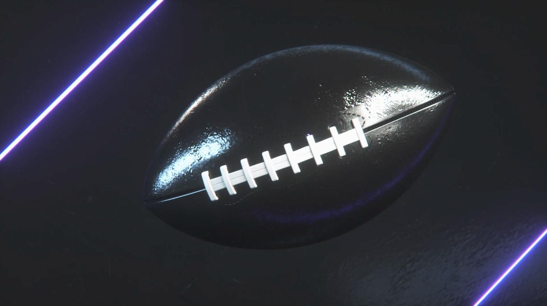NCS_NFL_Minnesota-Vikings-0001