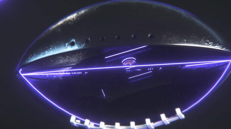 NCS_NFL_Minnesota-Vikings-0002
